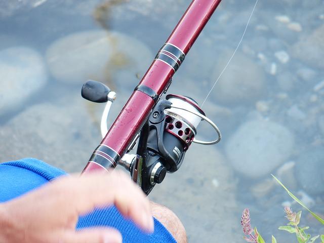 鯉釣りに適しているリールのサイズは?